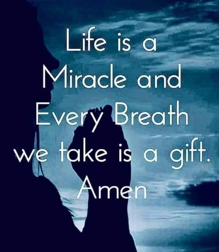 Stay In Gratitude