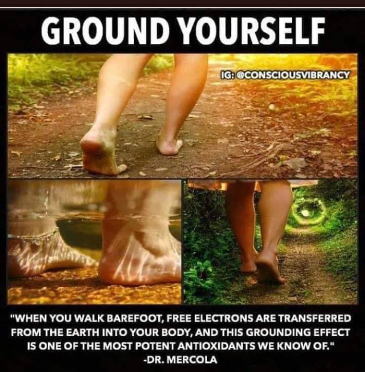 Have You Grounded Today?